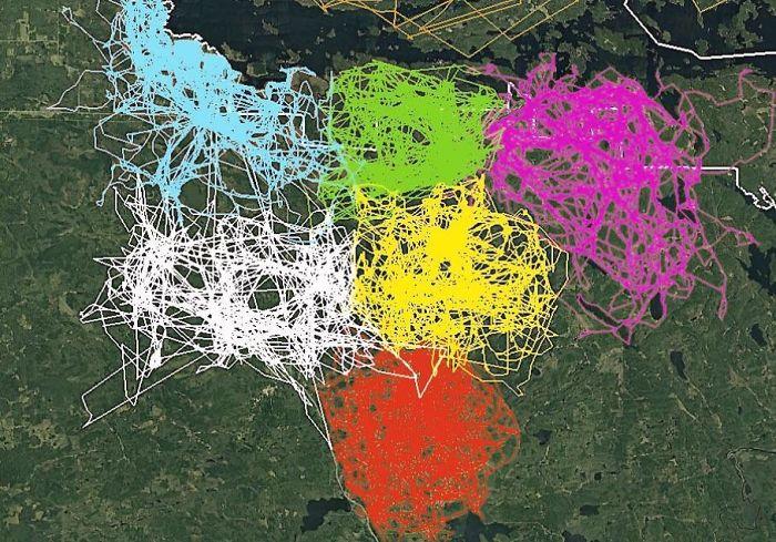 Peta Tidak Biasa yang Dibagikan Orang-Orang Di Grup Ini Yang Mungkin Mengubah Perspektif Anda Pada Berbagai Hal