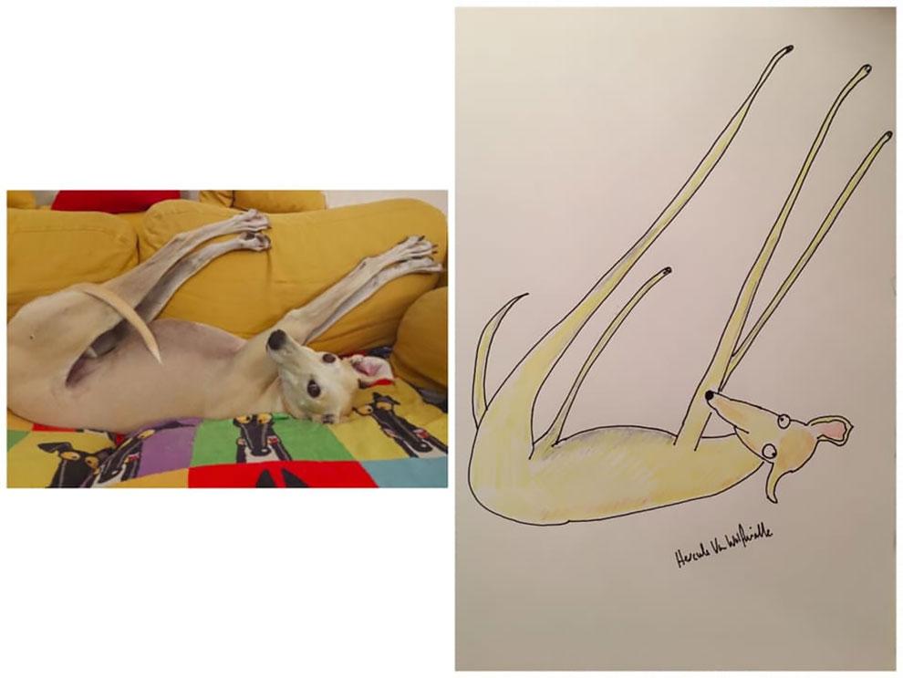 Artis Mengumpulkan Ribuan untuk Amal dengan Potret Hewan Peliharaan yang Lucu